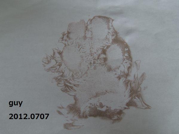 20120707guy01
