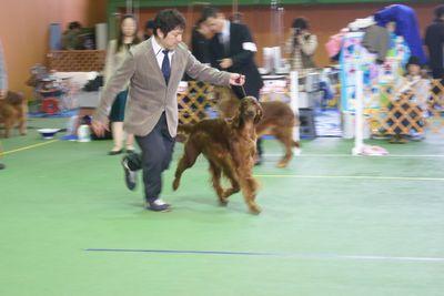 20111106ch-momoko2