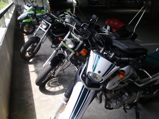 P4300199_convert_20100929175419.jpg
