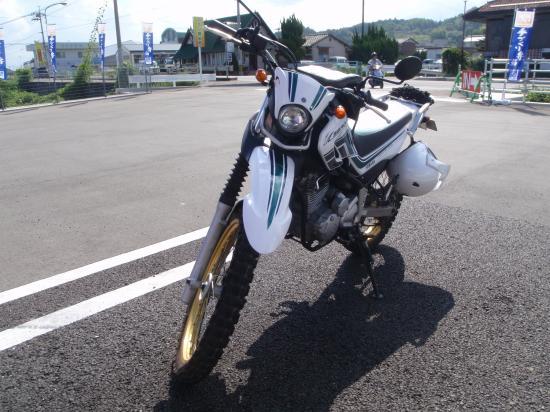 P9090239_convert_20100911092059.jpg