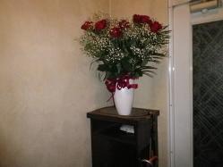 薔薇 (2)
