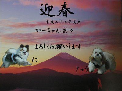 IMGP4004ーきめ-s