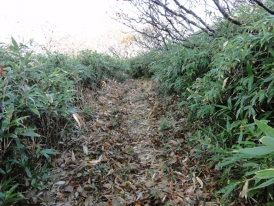 斜里岳 三井コース 058