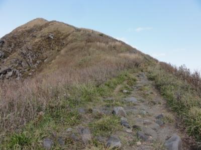 利尻島 149