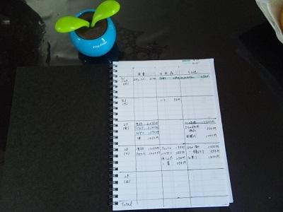 手作り家計簿(笑)