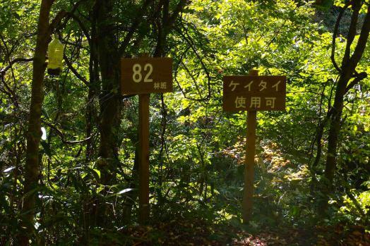 zzzPA132489.jpg