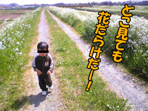 a-blog463.jpg
