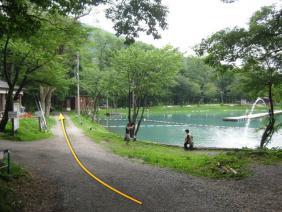 ④ニレ池3
