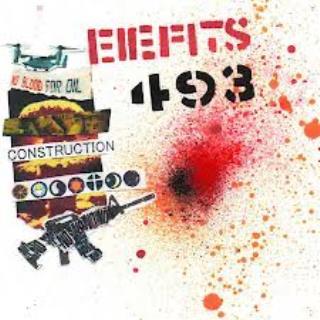 EIEFITS 493