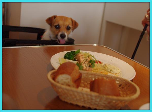ボクも食べたい.