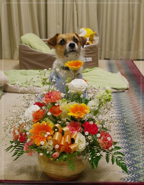 おまけ-Anniversary13