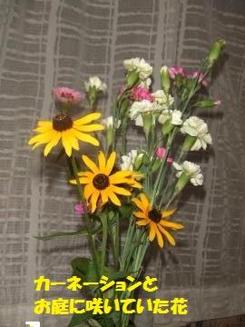 001_convert_20100820233144.jpg