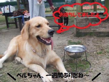 001_convert_20101025233534.jpg