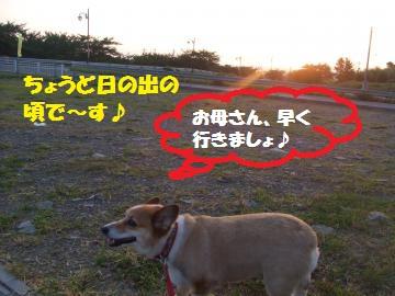 003_convert_20100728001143.jpg