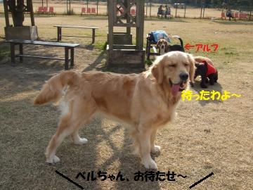 005_convert_20110114004718.jpg
