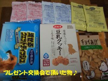 006_convert_20101123233353.jpg