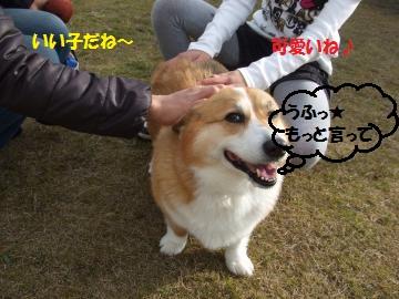 006_convert_20110124002420.jpg