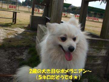 009_convert_20110124002507.jpg