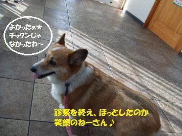 009_convert_20110130030752.jpg