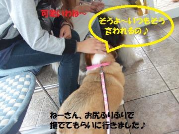 015_convert_20101101021424.jpg