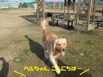 016_convert_20110201003404.jpg