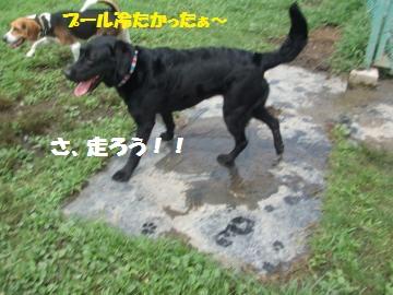 018_convert_20100818014423.jpg