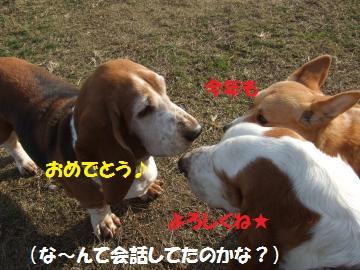 021_convert_20110104022857.jpg