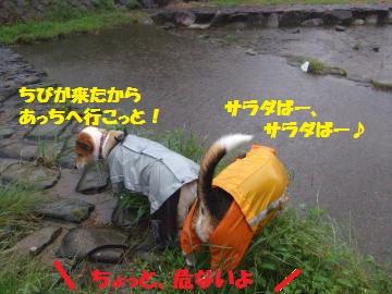 022_convert_20100711232806.jpg