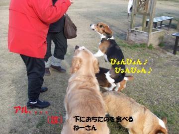 032_convert_20110201004020.jpg