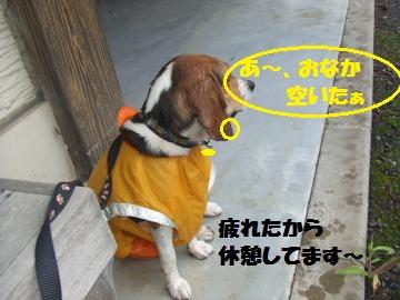 033_convert_20100711233102.jpg