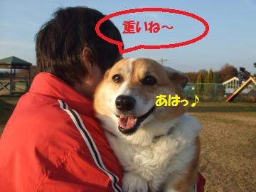 033_convert_20101208044544.jpg