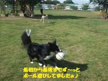 034_convert_20100810023846.jpg