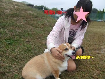 034_convert_20101025233443.jpg