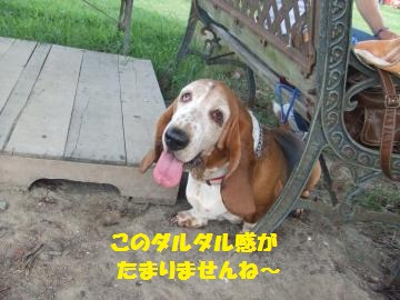 036_convert_20100810023758.jpg