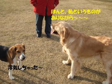 036_convert_20110124002920.jpg