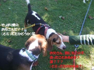 037_convert_20101013005231.jpg