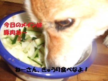 043_convert_20100714003436.jpg