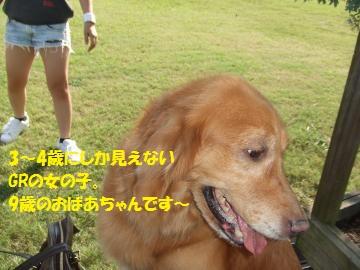 045_convert_20100921014851.jpg