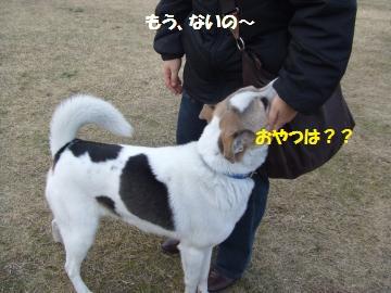 045_convert_20110114005609.jpg