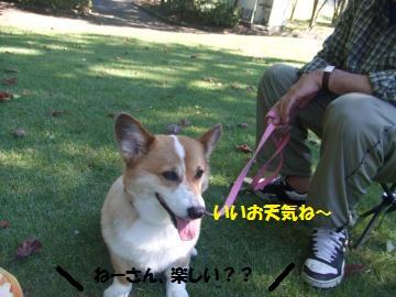 054_convert_20101013005340.jpg