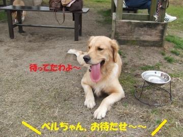 055_convert_20101116010352.jpg
