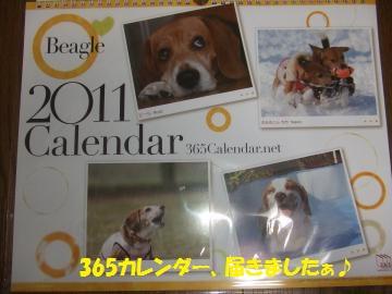 055_convert_20101206004609.jpg
