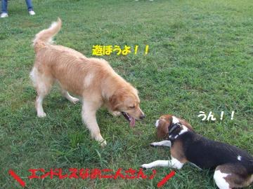 056_convert_20100921013913.jpg