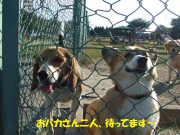 057_convert_20101022004730.jpg