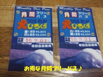 063_convert_20100811225024.jpg