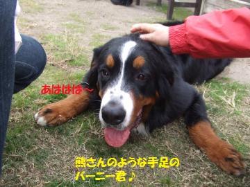 066_convert_20101116010643.jpg