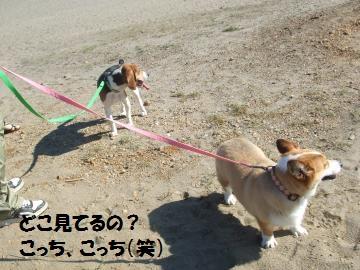 068_convert_20101014233758.jpg