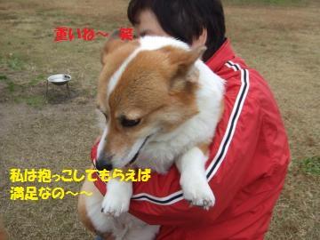 069_convert_20101116011220.jpg