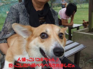 081_convert_20100921014432.jpg