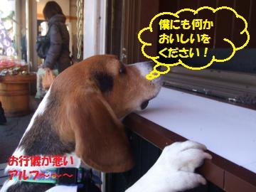 081_convert_20110110225727.jpg